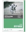 Cahier Kyokuto pour la pratique de l'écriture des kanjis - Format 150 kanjis / page