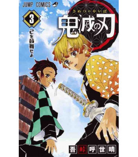 Kimetsu no Yaiba (Demon Slayer) - Vol 3