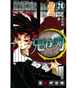 Kimetsu no Yaiba (Demon Slayer) - Vol 20
