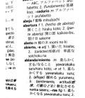 Diccionario Pocket Japonés-Español/ Español-Japonés