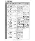 The Japanese Language Proficiency Test N1 - Practice Exams and Strategies - Vol 1 (CD inclus)